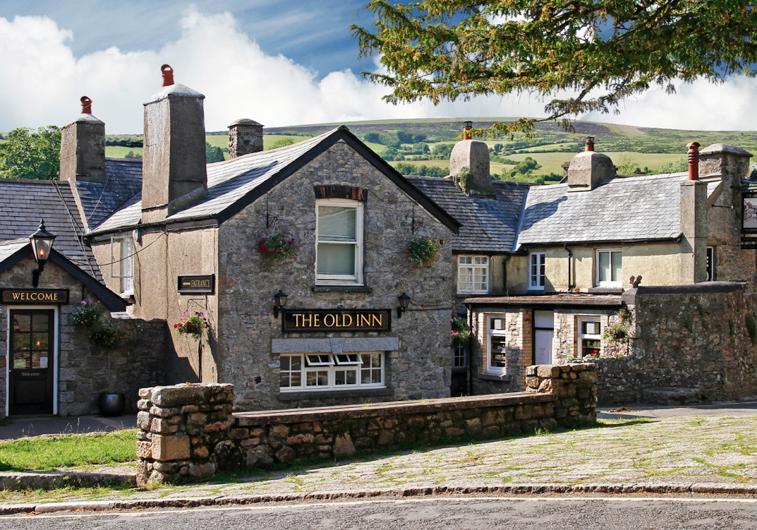 Dog Friendly Pubs In Topsham Devon